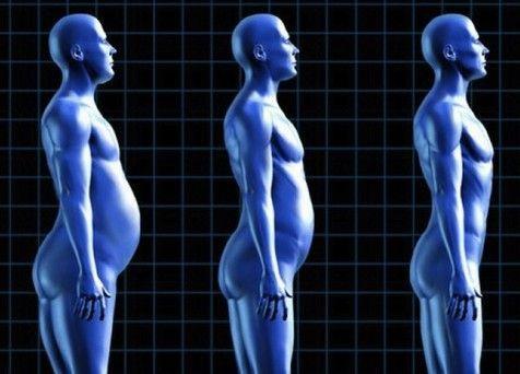 ejercicios para adelgazar la barriga, adelgazar, entrenador eprsonal valencia, entrenador personal online, biotraje, alex gimenez, transformador personal