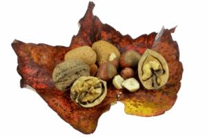 frutos secos buenos para la salud
