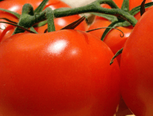 Los tomates en tu dieta